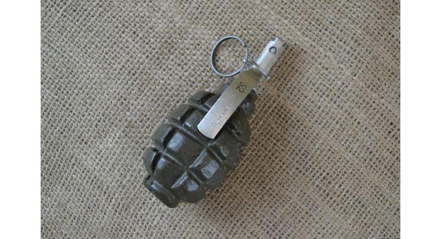 Муляж гранаты Ф-1 [мт-200]